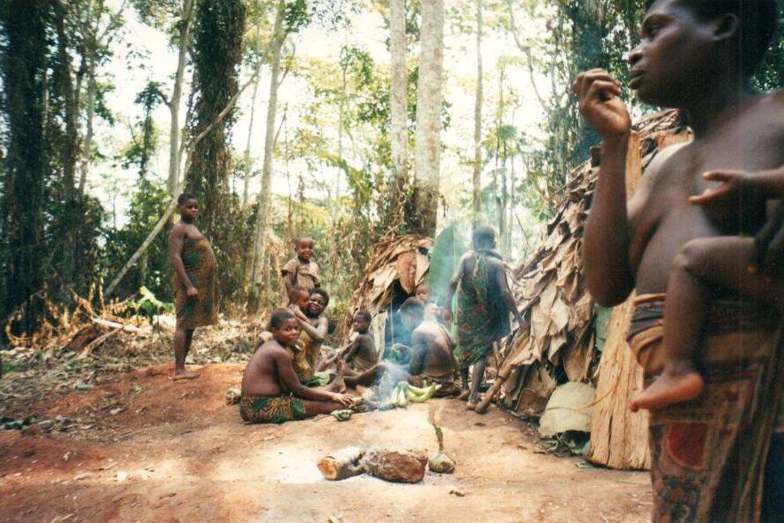 obóz Pigmejów w dżungli - odpoczynek